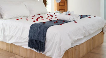 Essential bedding supplies you must have