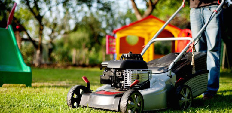 Keep your garden organized and pleasant with lawn mowers
