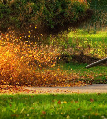 Popular affordable leaf blowers under $100