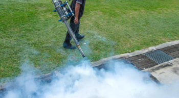 Two essential steps for mosquito control