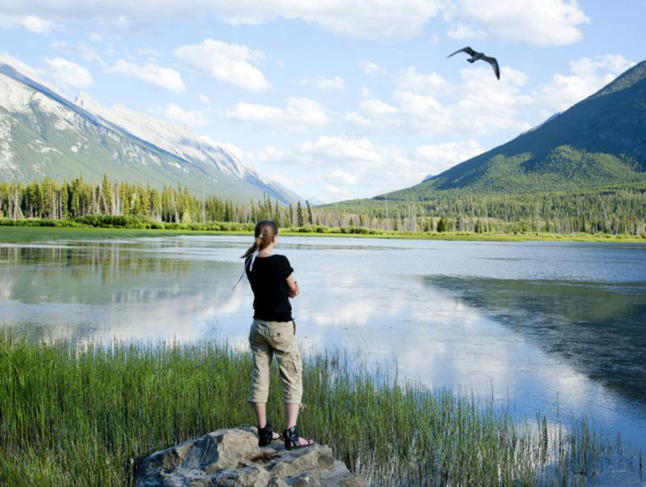 All You Need to Know to Have the Best Canadian Rockies Tour