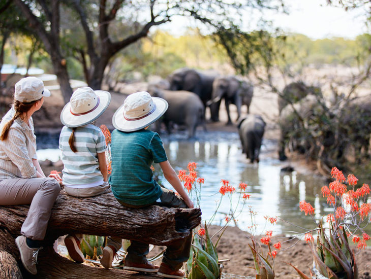 Top 11 Luxury African Safari Lodges
