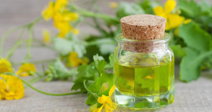 Natural Steps To Aid With Allergy Relief