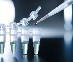 Some Insights on Stem Cell Therapy