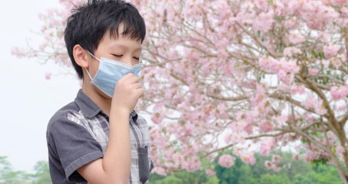 The Essential Facts That You Should Know Allergy Relief for Kids