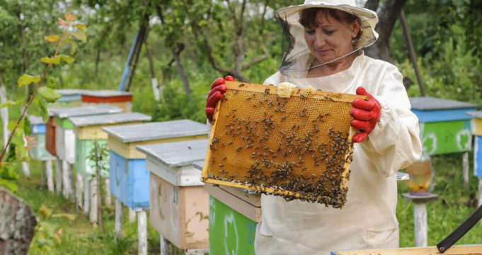 What You Need To Know When It Comes To Hives