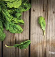 Spinach - The Mean Green Nutrient Machine