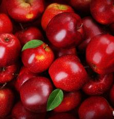 Apple - Eve's favorite fruit