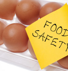 Food Safety Education Necessary for Older Adults