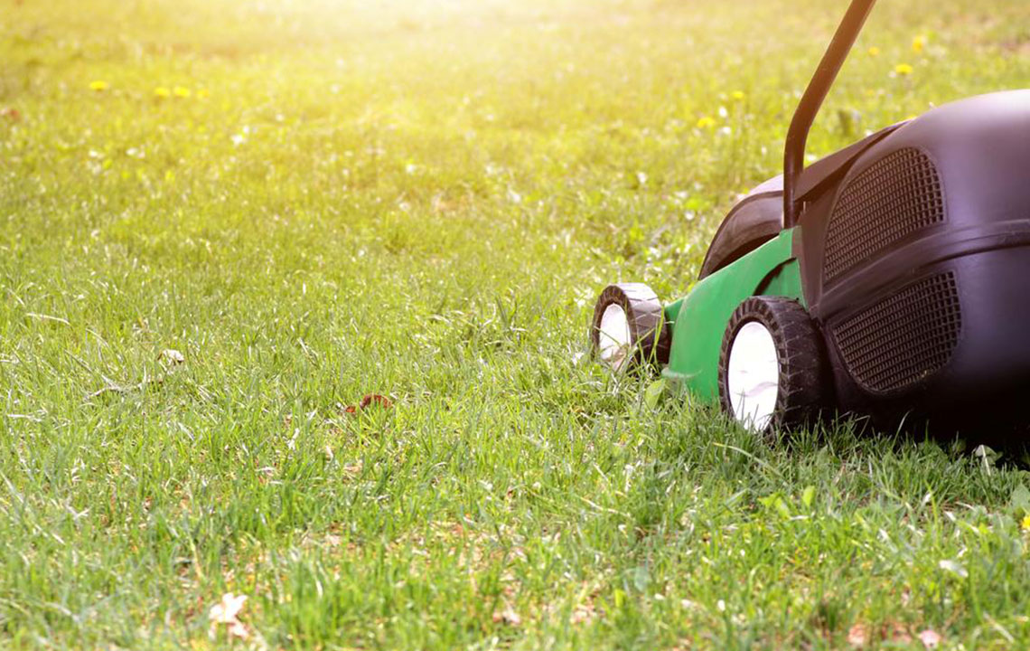 Your guide to choosing an ideal lawn mower