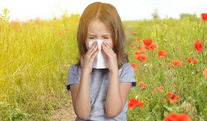 Best Seasonal Allergy Medicines to Keep Allergies at Bay