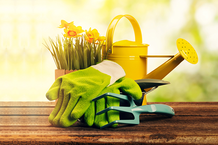 5 Gardening Accessories You Simply Must Have